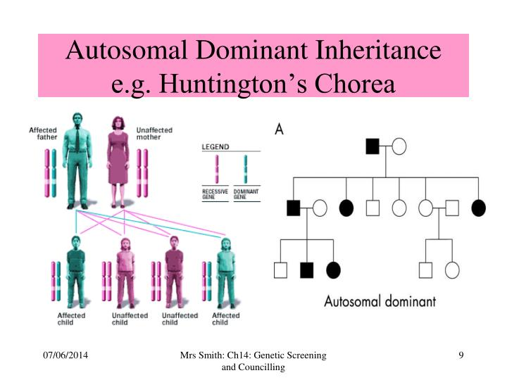Autosomal Dominant Inheritance