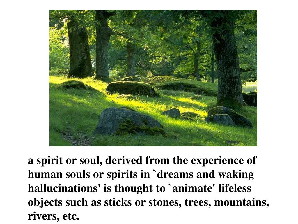 a spirit or soul, derived from the experience of human souls or spirits in `dreams and waking hallucinations' is thought to `animate' lifeless objects such as sticks or stones, trees, mountains, rivers, etc.