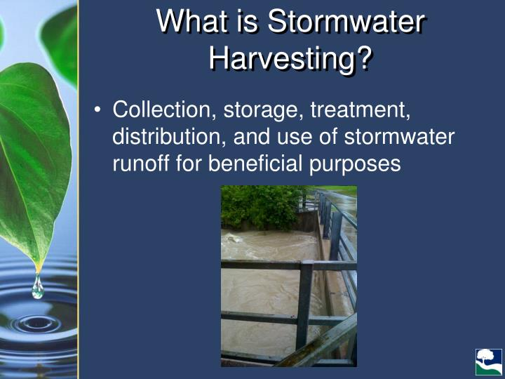 What is Stormwater Harvesting?