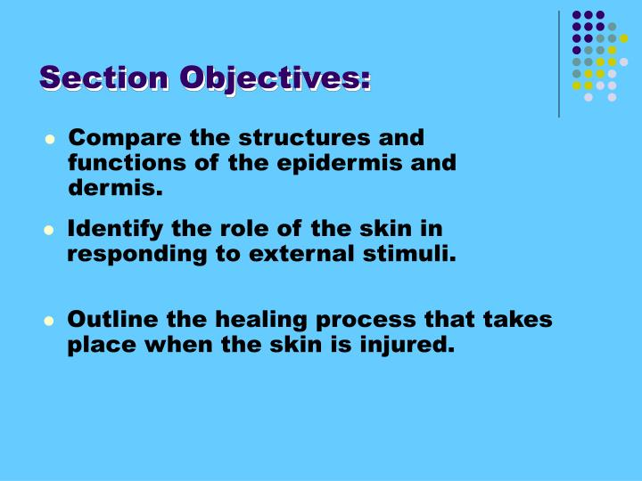 Section Objectives: