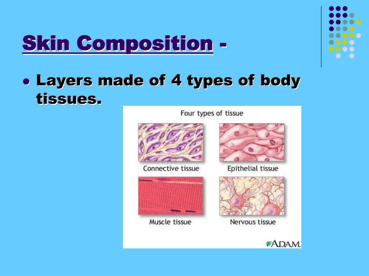 Skin Composition