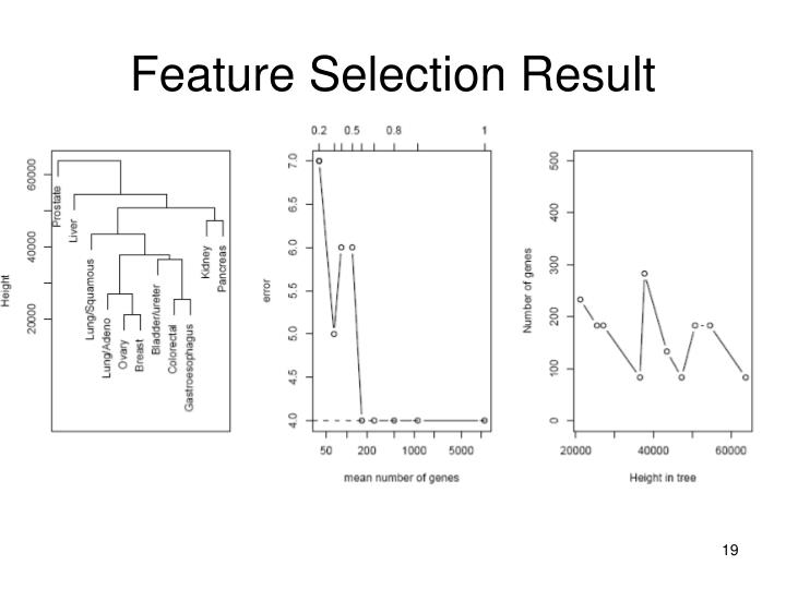 Feature Selection Result