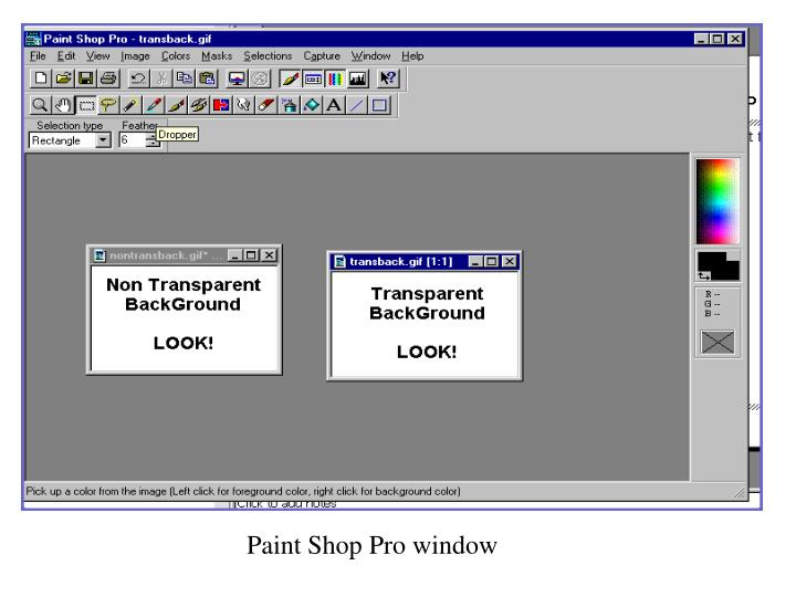 Paint Shop Pro window