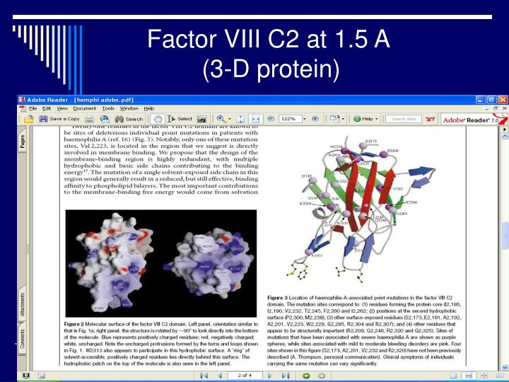 Factor VIII C2 at 1.5 A