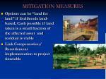 mitigation measures1