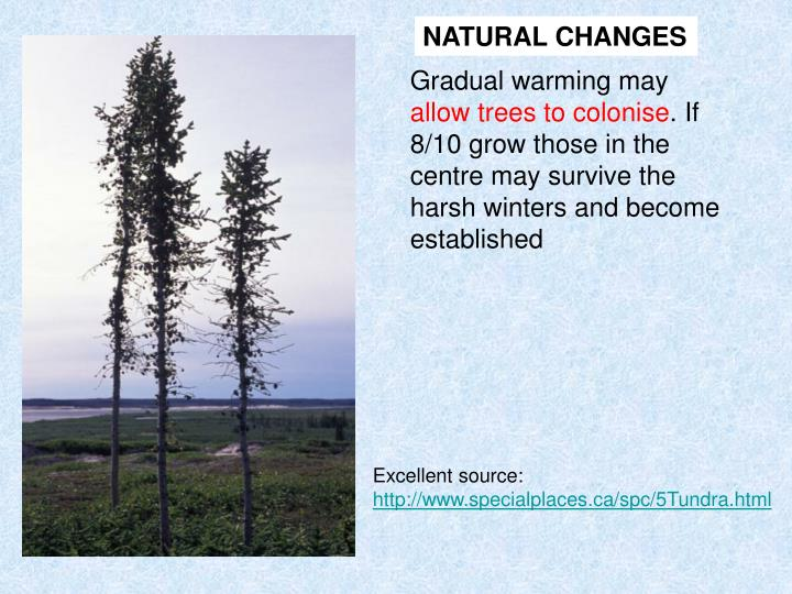 NATURAL CHANGES
