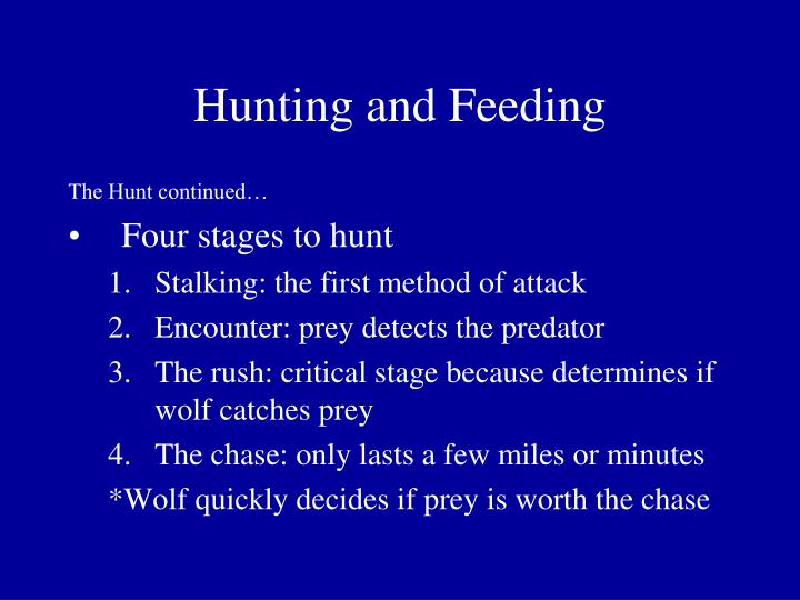 Hunting and Feeding