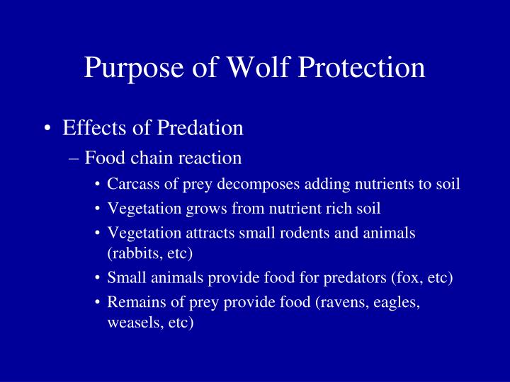Purpose of Wolf Protection