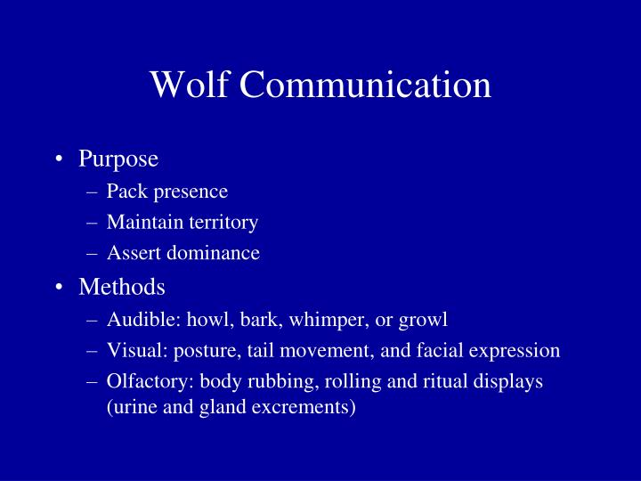 Wolf Communication