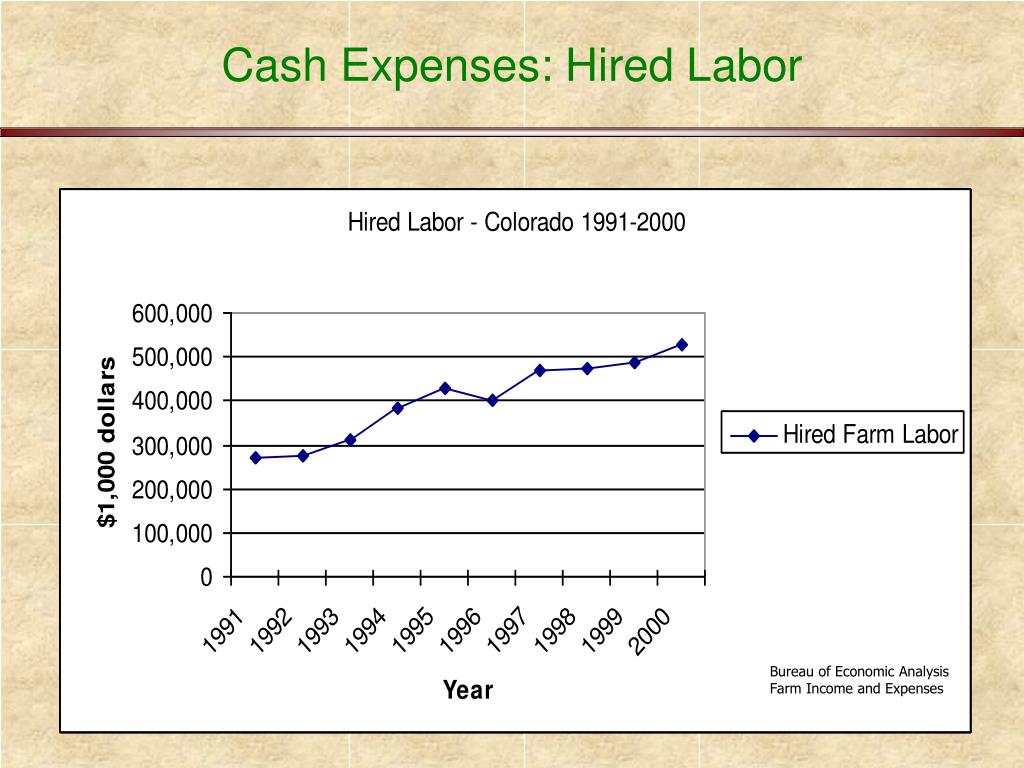 Cash Expenses: Hired Labor