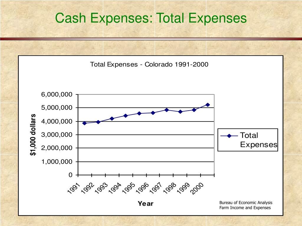 Cash Expenses: Total Expenses