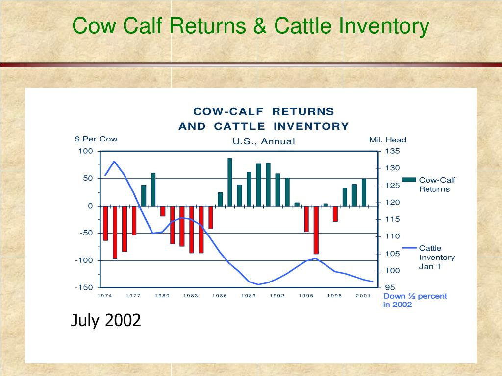 Cow Calf Returns & Cattle Inventory