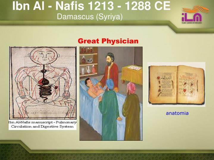 Ibn Al - Nafis 1213 - 1288 CE
