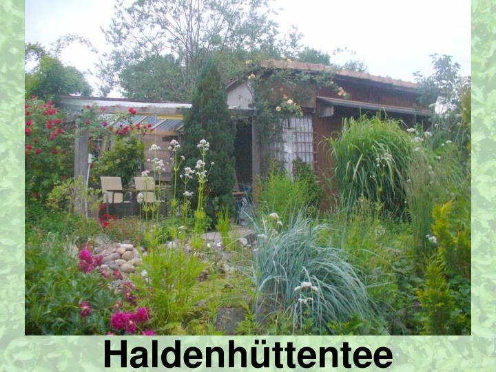 Haldenhüttentee