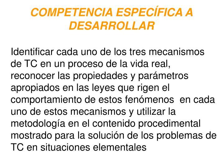 COMPETENCIA ESPECÍFICA A DESARROLLAR