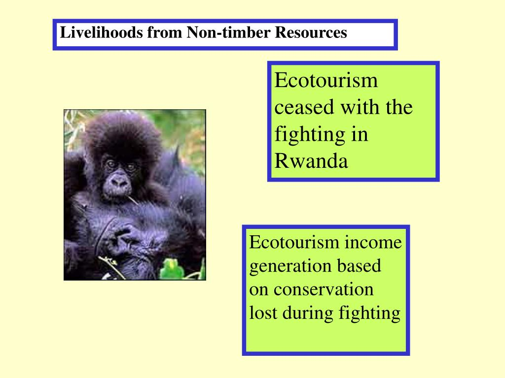Livelihoods from Non-timber Resources