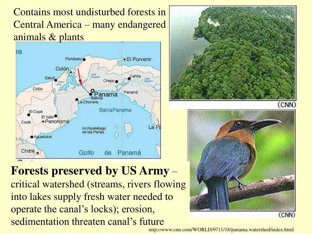 Contains most undisturbed forests in Central America – many endangered animals & plants