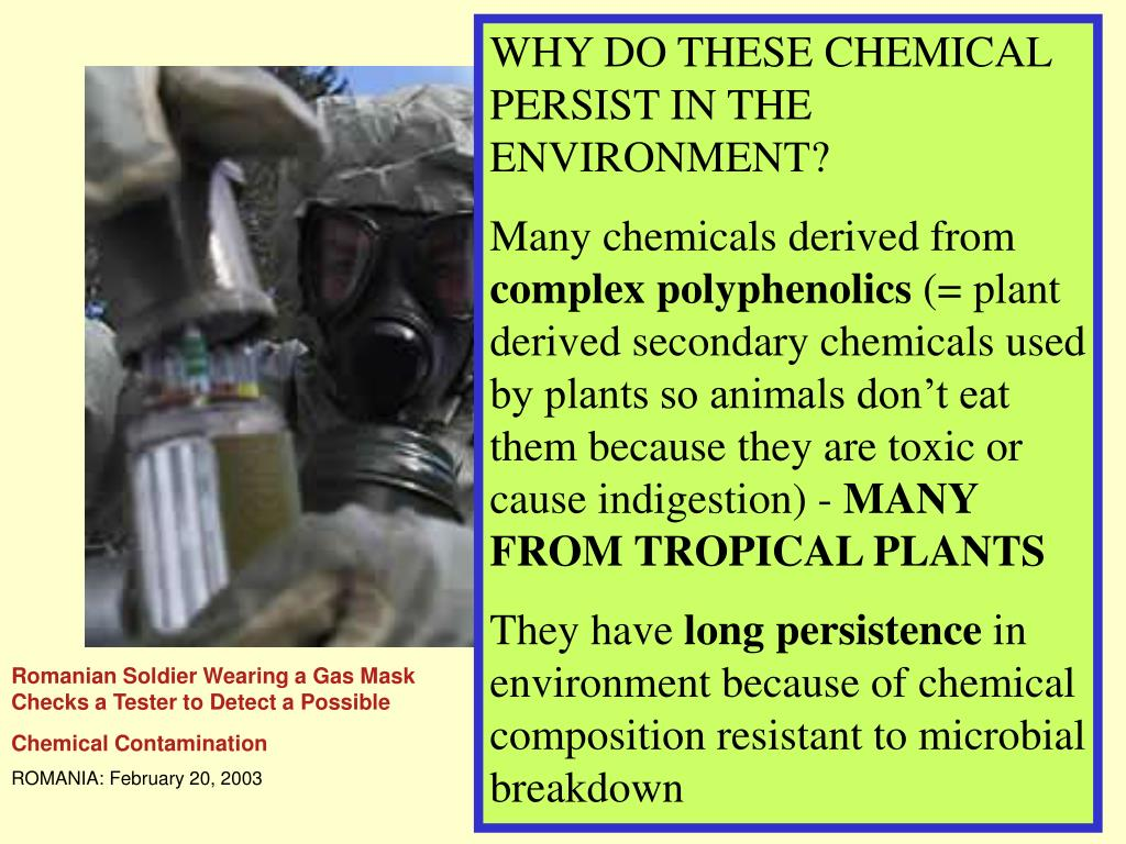 WHY DO THESE CHEMICAL PERSIST IN THE ENVIRONMENT?