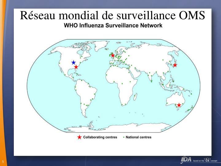 Réseau mondial de surveillance OMS