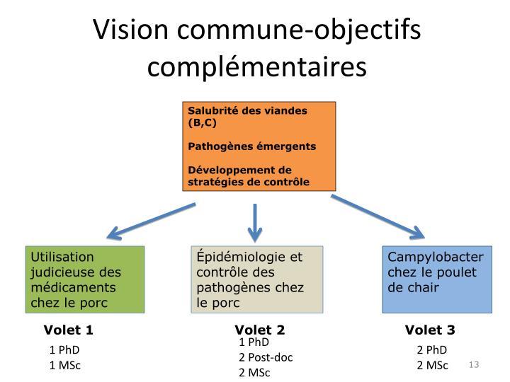 Vision commune-objectifs complémentaires