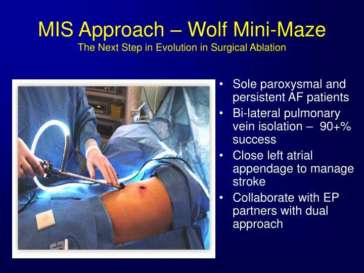 MIS Approach – Wolf Mini-Maze