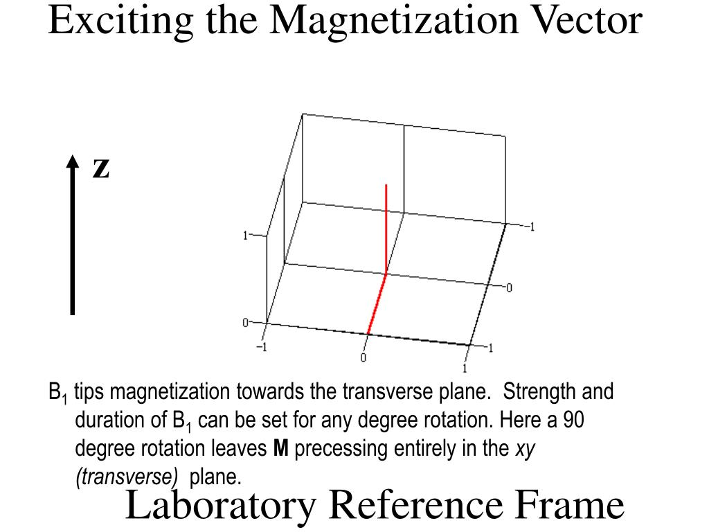 Exciting the Magnetization Vector