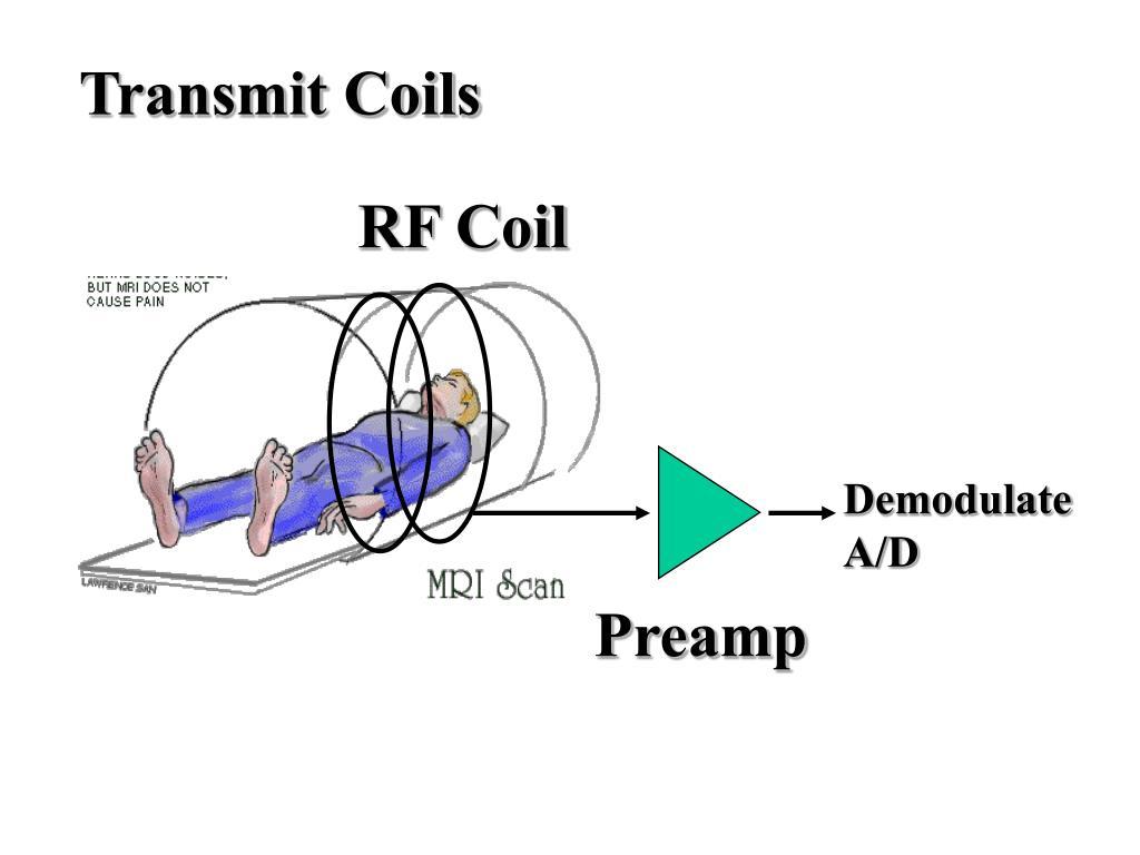 Transmit Coils
