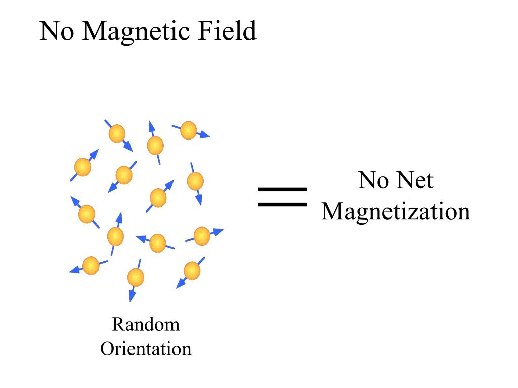 No Magnetic Field