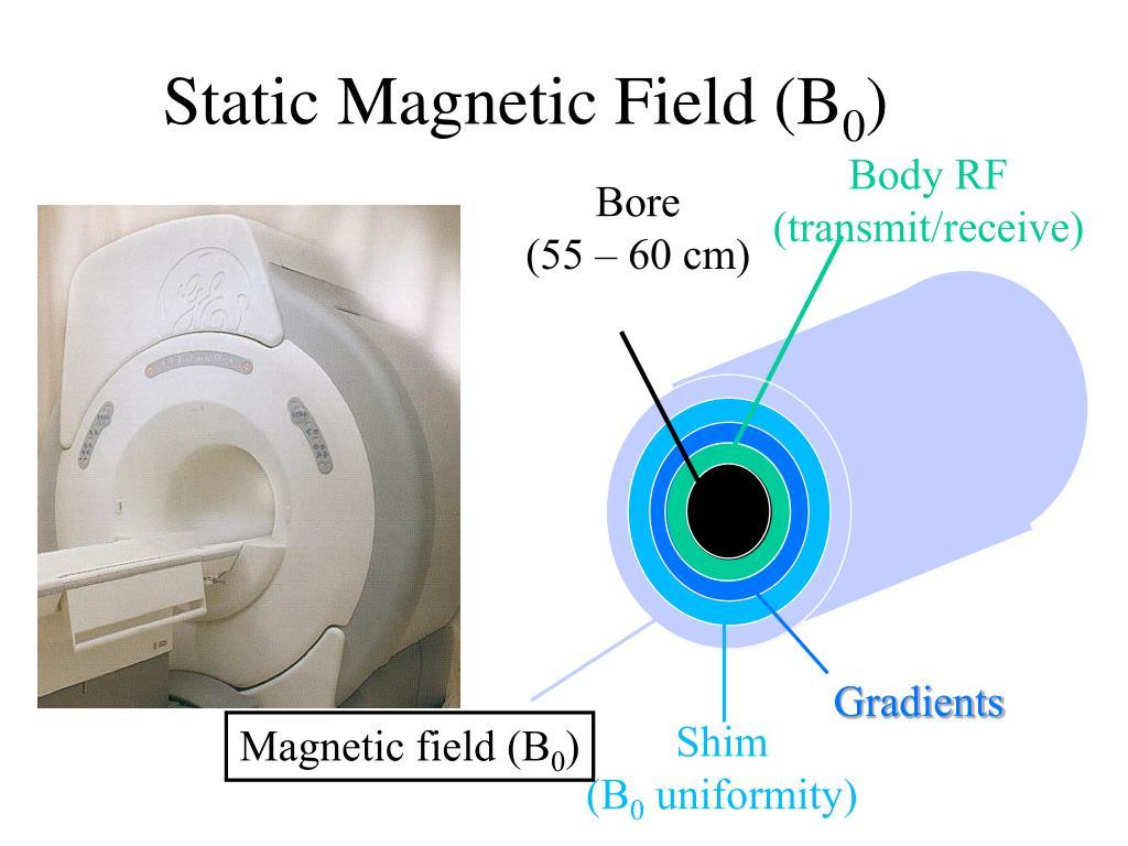 Static Magnetic Field (B