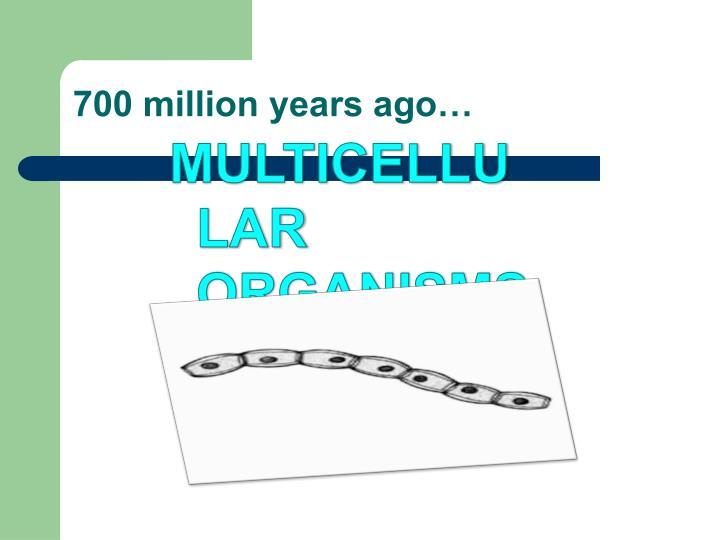 700 million years ago…