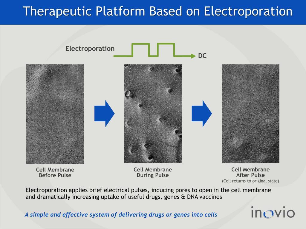 Therapeutic Platform Based on Electroporation