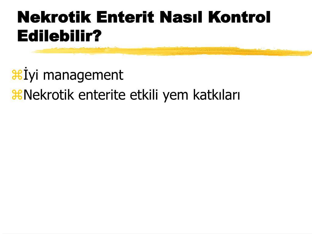 Nekrotik Enterit Nasıl Kontrol Edilebilir?