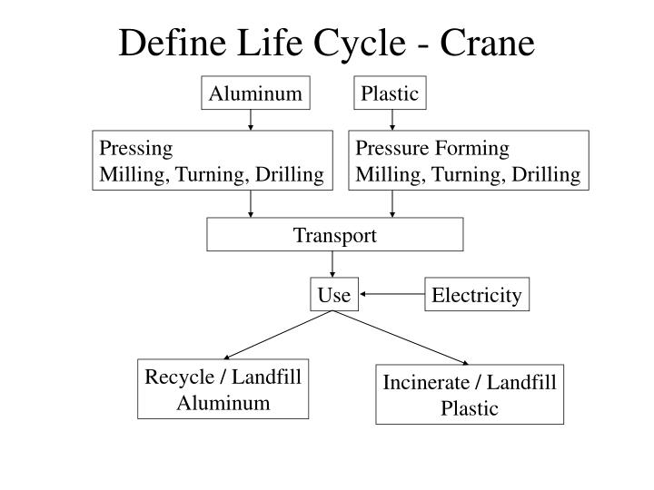 Define Life Cycle - Crane