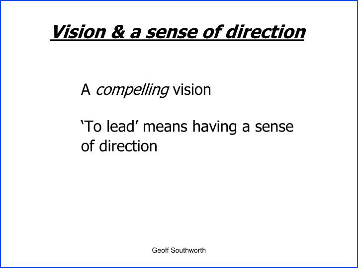 Vision & a sense of direction