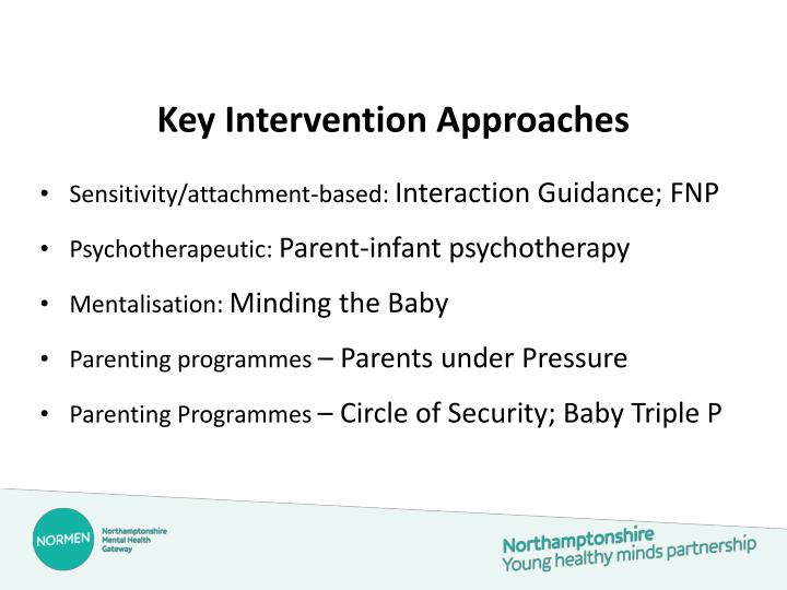 Key Intervention Approaches
