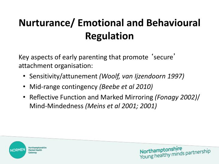 Nurturance/ Emotional and Behavioural Regulation