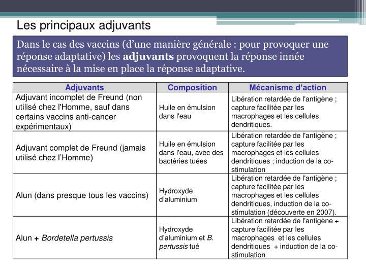 Dans le cas des vaccins (d'une manière générale : pour provoquer une réponse adaptative) les