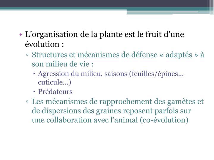 L'organisation de la plante est le fruit d'une évolution :