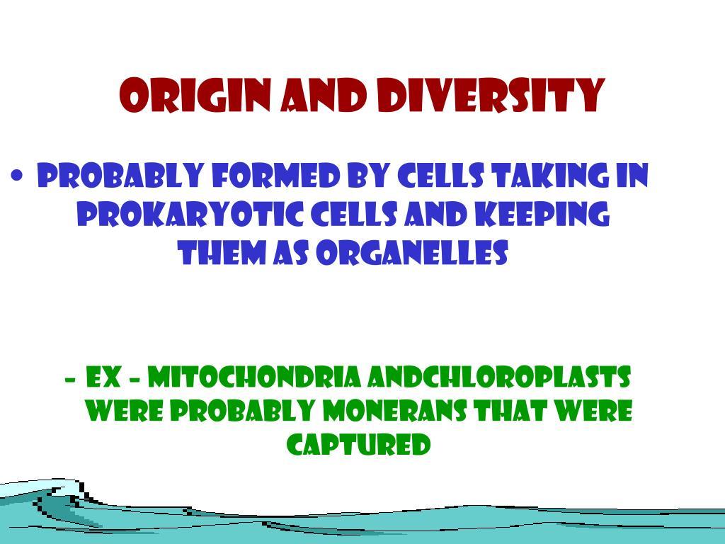 Origin and Diversity
