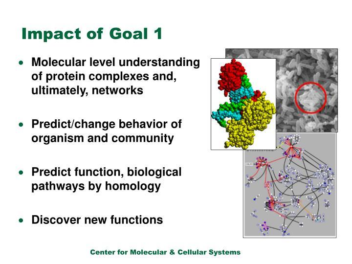 Impact of Goal 1