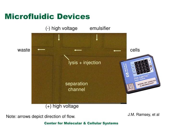 (-) high voltage