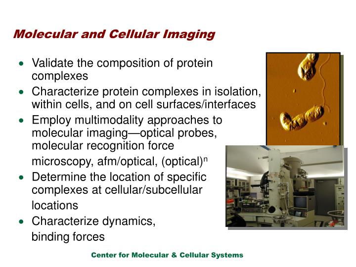 Molecular and Cellular Imaging