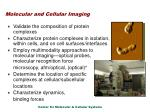molecular and cellular imaging