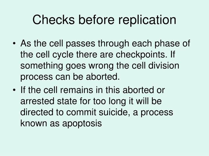 Checks before replication