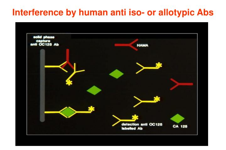Interference by human anti iso- or allotypic Abs
