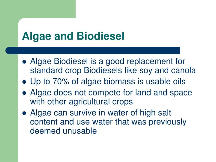 Algae and Biodiesel