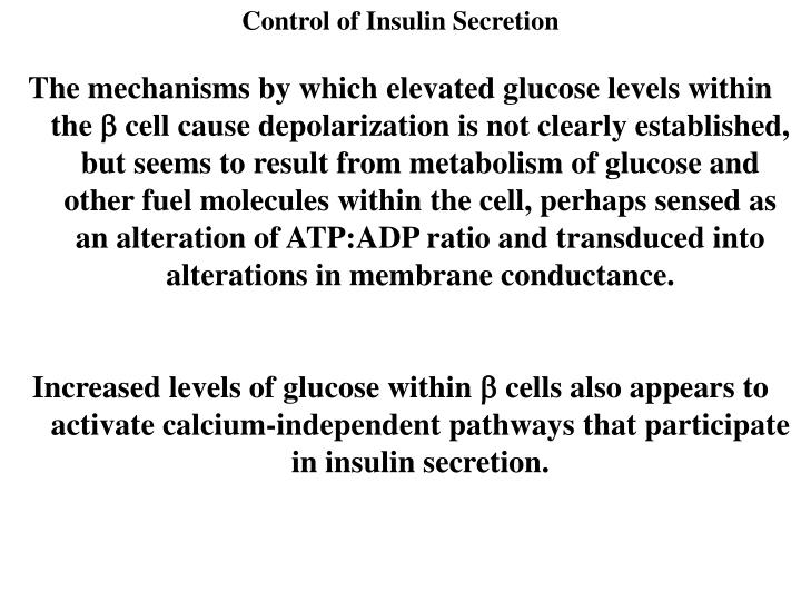 Control of Insulin Secretion