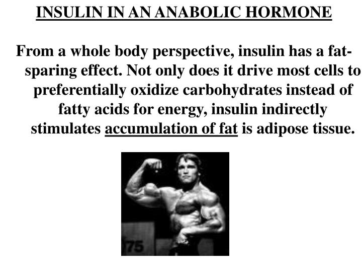 INSULIN IN AN ANABOLIC HORMONE