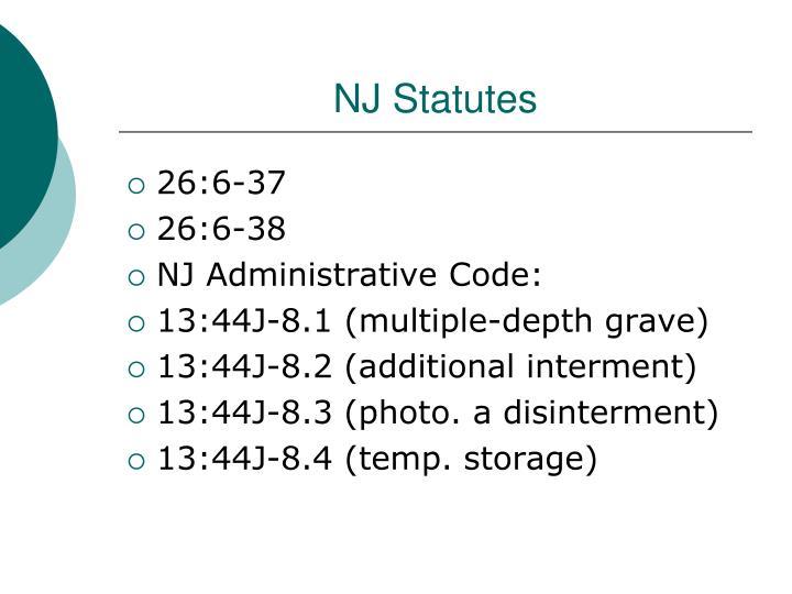 NJ Statutes