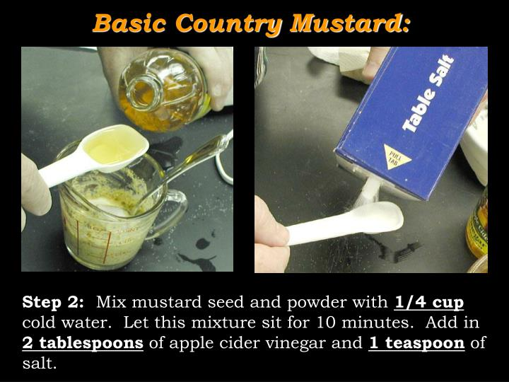 Basic Country Mustard: